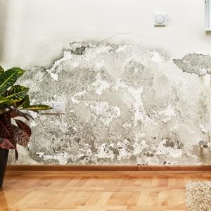 onderkappen muren oorzaak